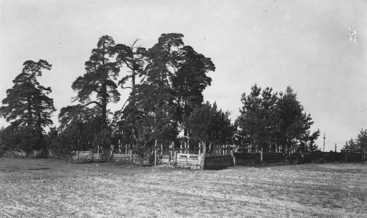Cmentarz żołnierzy legionowych w Wołeczku przed ofensywą Brusiłowa i...