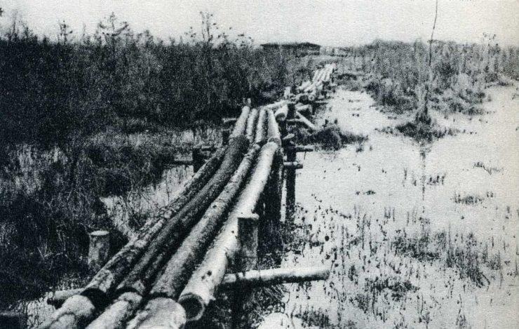 """Ścieżka z bali drewnianych prowadząca poprzez bagna. Taką ścieżką pod stałym ostrzałem rosyjskim przebijali się z okrążenia żołnierze batalionów Stanisława """"Sława"""" Zwierzyńskiego i Tadeusza """"Wyrwy"""" Furgalskiego."""